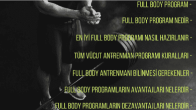 Full Body Program